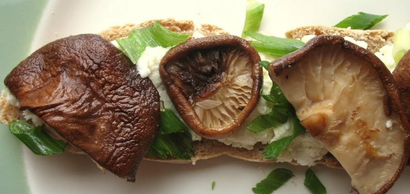 Shiitake Mushroom and Wasabi-Spiced Ricotta Crostini