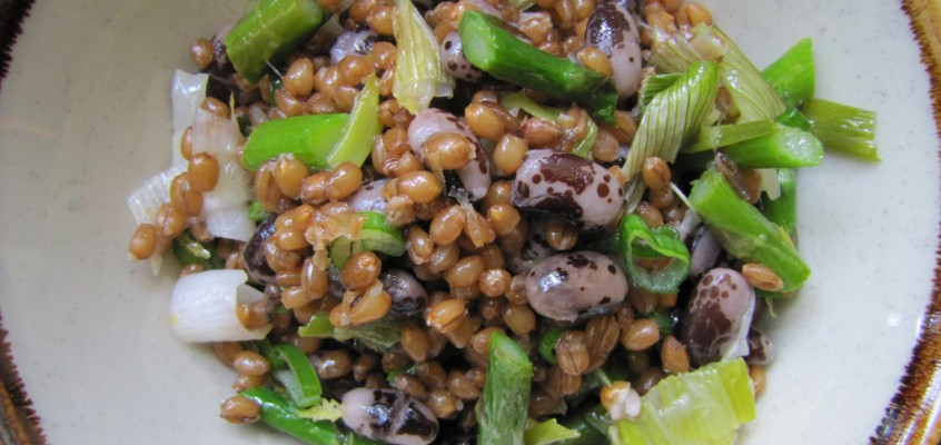 Wheatberry & Bean Salad with Roasted Spring Onions & Asparagus